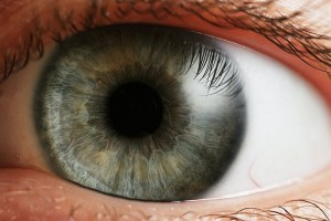 Internet en el ojo, conexion visual internet