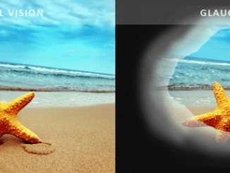 simulador vision glaucoma