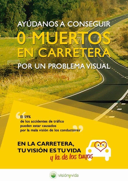 coche y vision